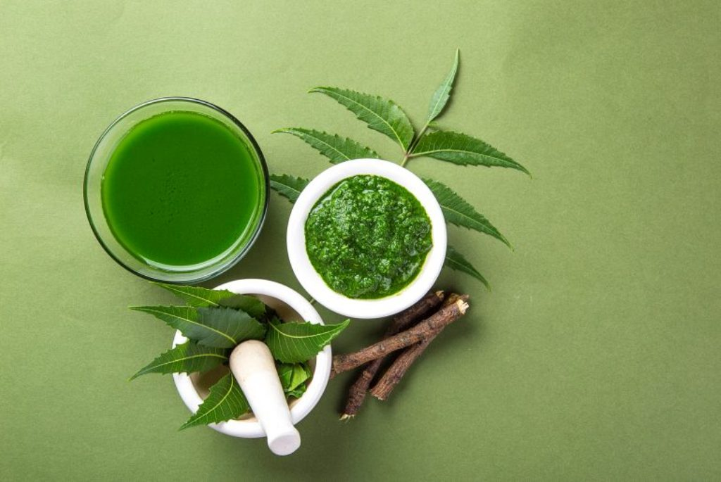 neem tree benefits